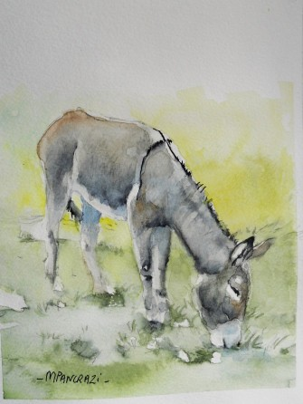 âne gris 18x24