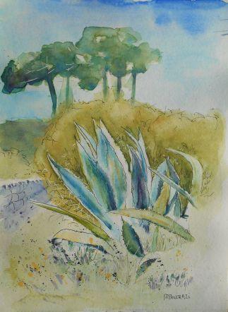Cactus; 21x29,7