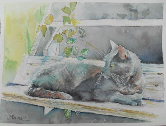 John Eliot, chat gris chartreux, aquarelle 30x40