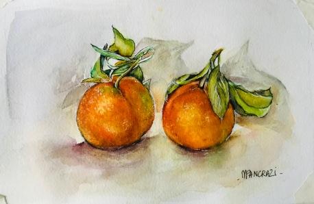 Clémentines; aquarelle 21x15